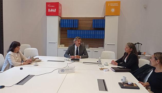 Reunión UEU - ONU